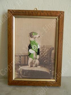 green_lantern_copyright_deco_objets_insolitres_décorations_idée_cadeau_cabinet_de_curiosités