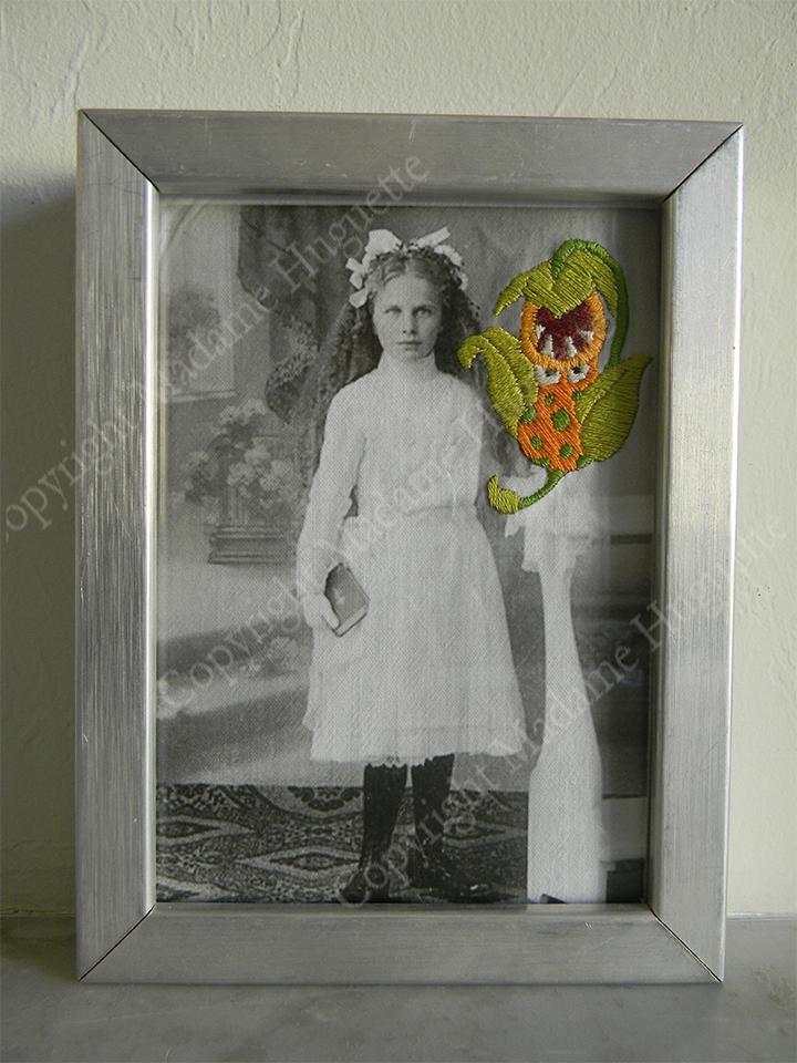 carnibulbus deco objets insolites décorations idée cadeau cabinet de curiosités