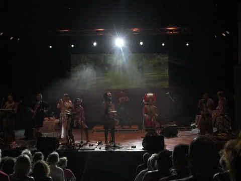 Rudolstadt音樂節 - 表演藝術中心演出