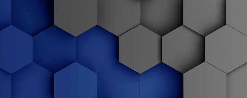LDNIO WEBSITE Banner.jpg