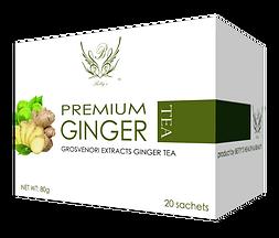 Premium Ginger 3d translucent.png