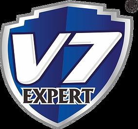 V7 logo.png