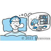 眠りながら脳が整理をしているイラスト