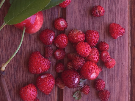 How to enjoy wild strawberries and stuff ...