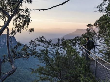 The Blue Mountains NSW needs your help
