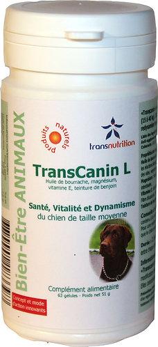 TransCanin-L