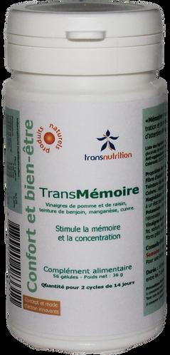 TransMémoire