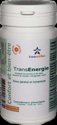 TransEnergie