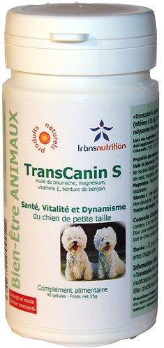 TransCanin-S