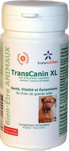 TransCanin-XL