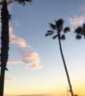 #sunset #manhattanbeach #california