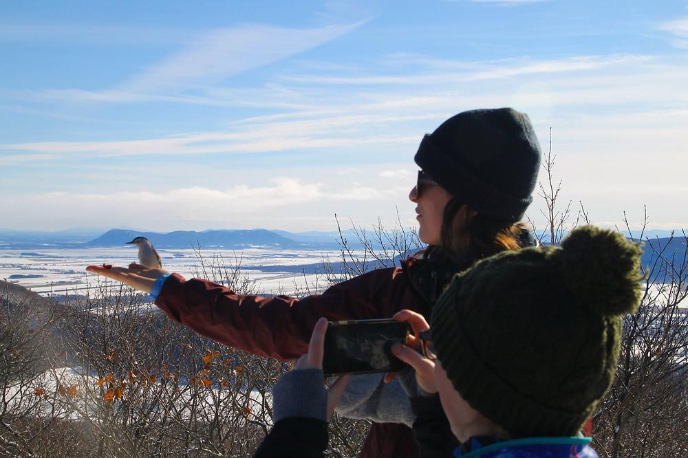 Feeding a bird while hiking