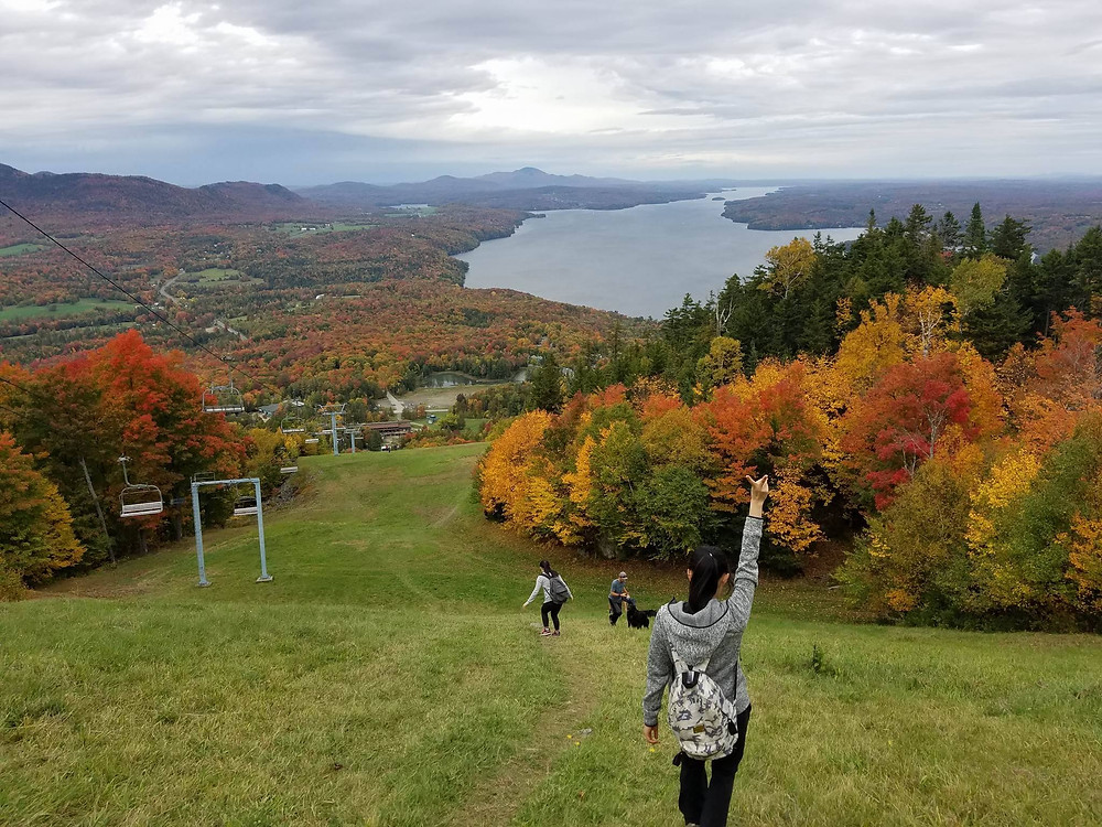 Hiking view with fall colours
