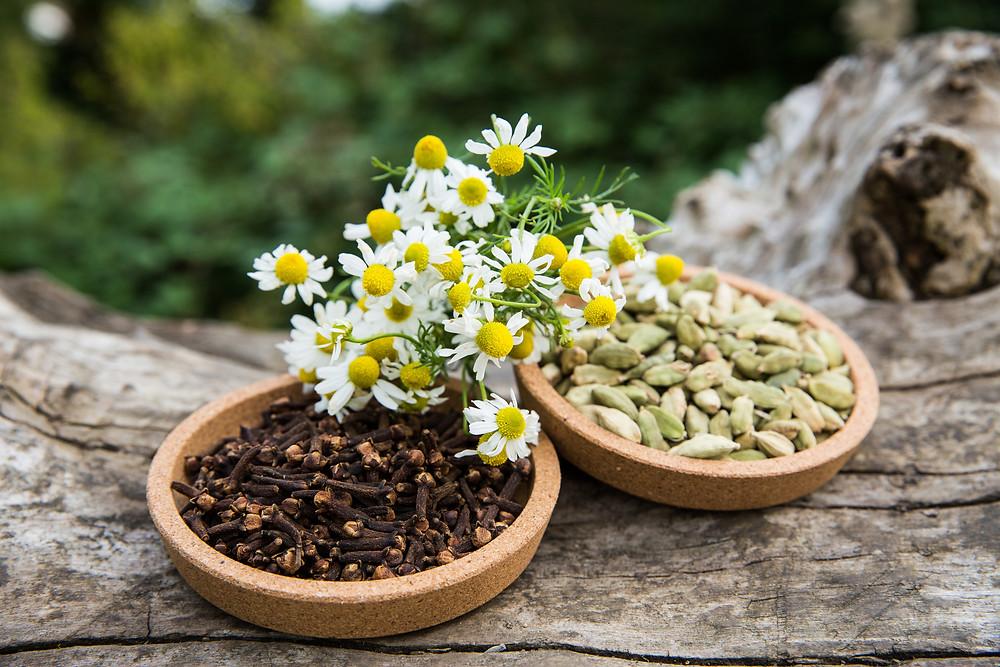 INDULGENCE - Camomile, Cardamom & Clove