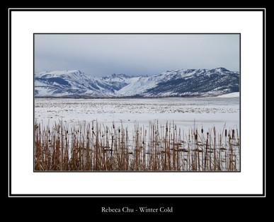 Winter Cold - Rebeca Chu