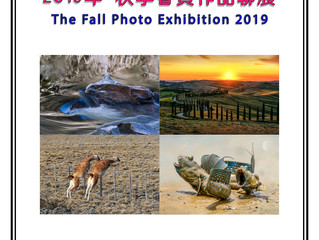 TAPA 2019 秋季會員攝影聯展 - 9月7日 (星期六) 和 9月8日 (星期日) 10AM - 5PM