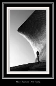 Museo Soumaya - Ann Huang