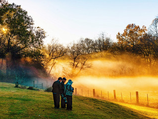 TAPA 11月16日 (星期六 2pm - 5pm) 例會 - 本次聚會我們將分享 2019 TAPA 秋季旅遊到大煙山的照片。