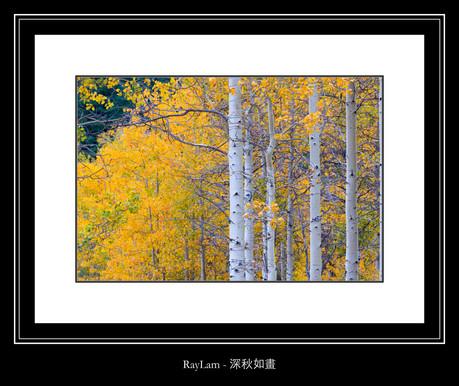 深秋如畫 - Ray Lam