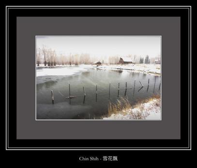 雪花飄 - Chin Shih