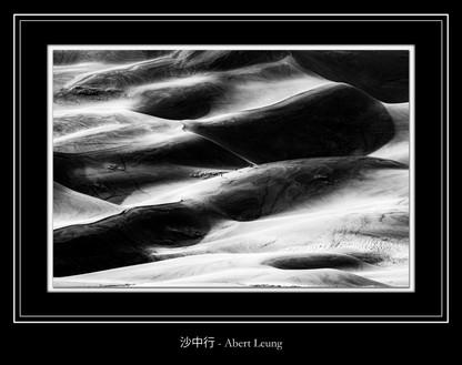 沙中行 - Abert Leung