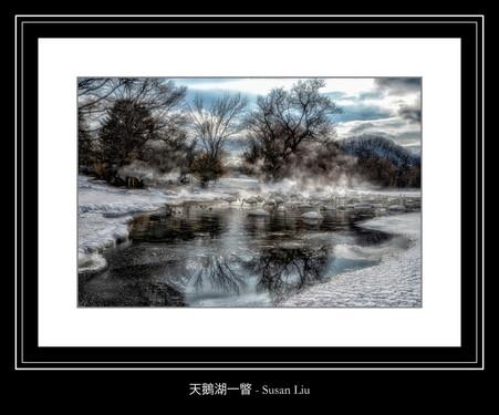 天鵝湖一瞥 - Susan Liu