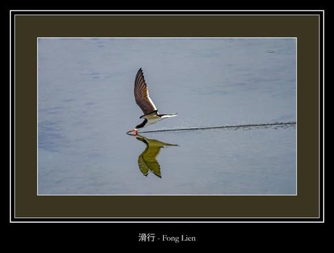 滑行 - Fong Lien