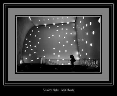 A starry night - Ann Huang
