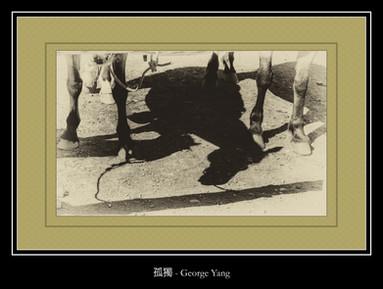 孤獨 - George Yang