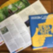 marketing-publication-design-editing-ocean-editing