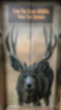 Wildlife Elevator