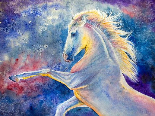 Horses, healing and power