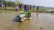 ASMC partners in Bangladesh have been hard at work. The Department of Agricultural Extension (DAE), under the technical advice of the Appropriate Scale Mechanization Innovation Hub (ASMIH)- Bangladesh began synchronized transplanting of rice paddy at Dumuria, Khulna on January 28th, 2021 with a target of transplanting 50 acres.