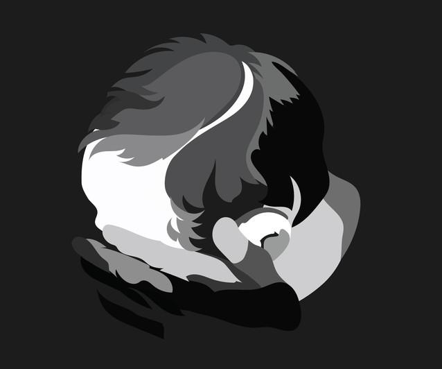 new-shadow-shame-01.jpg