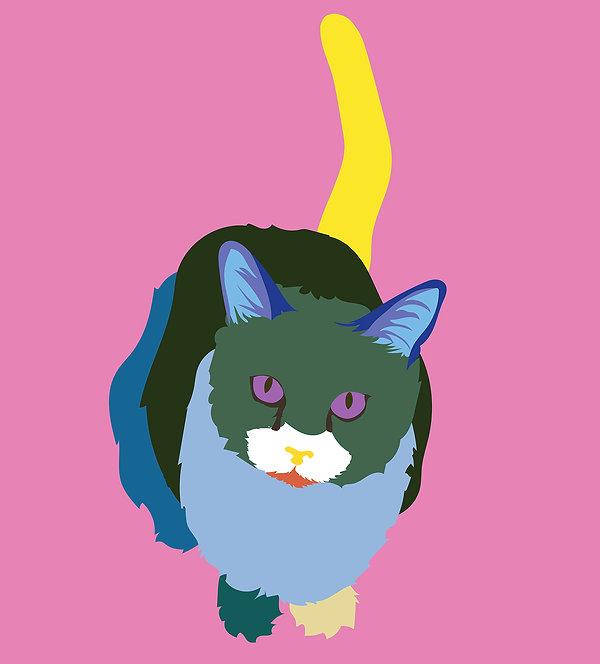 cat-2-01.jpg