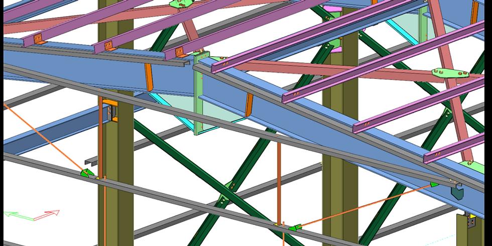 (RO) Workshop Prota Steel Detailing