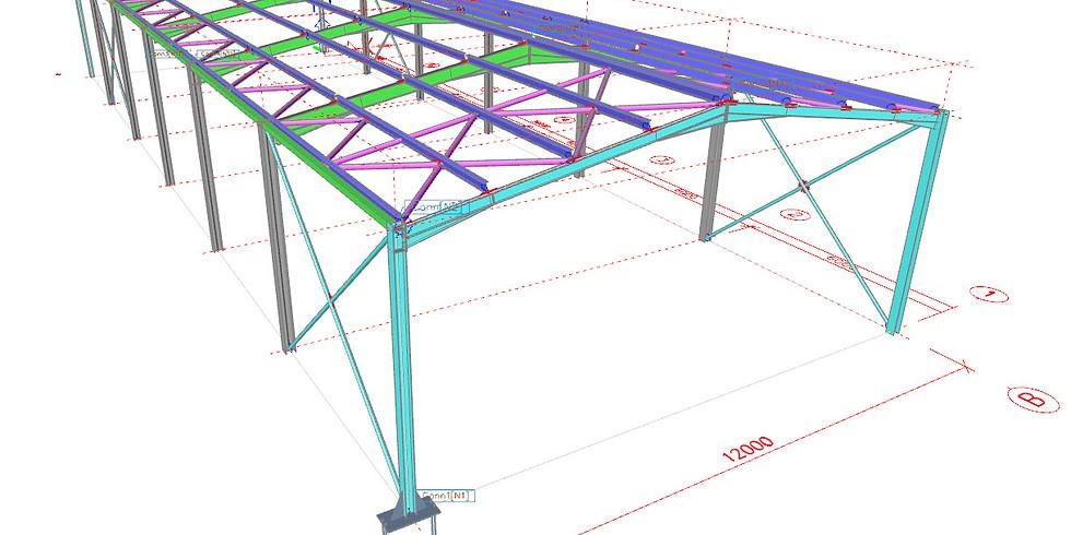 (EN) Scia Engineer - Steel Training - ONLINE Training