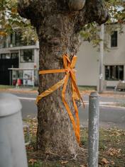 Carla O'Brien - Gift Trees 2021