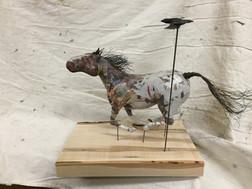 Prairie Racer