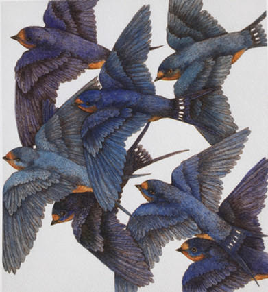 Blue migration