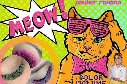 Color Volume & Express Fan Webinar
