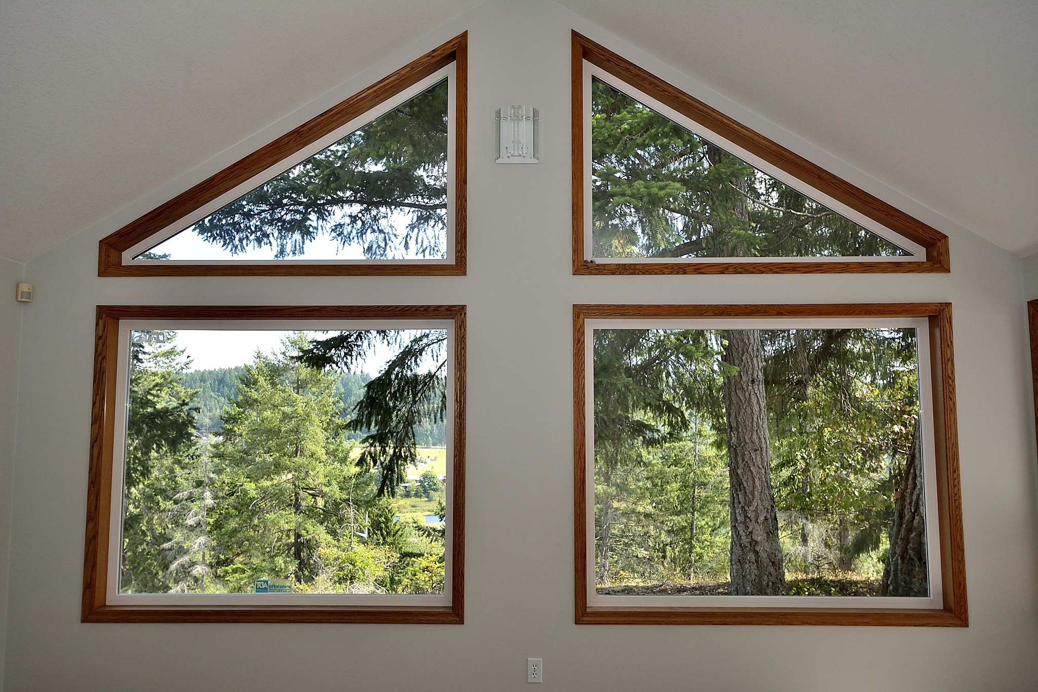 Livingroom Windows