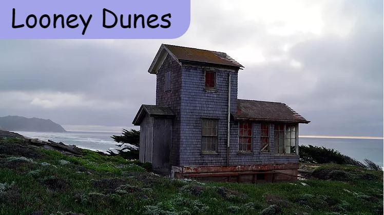 Looney Dunes