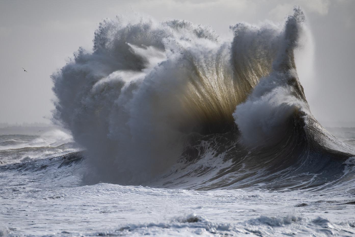 The Ocean's Power