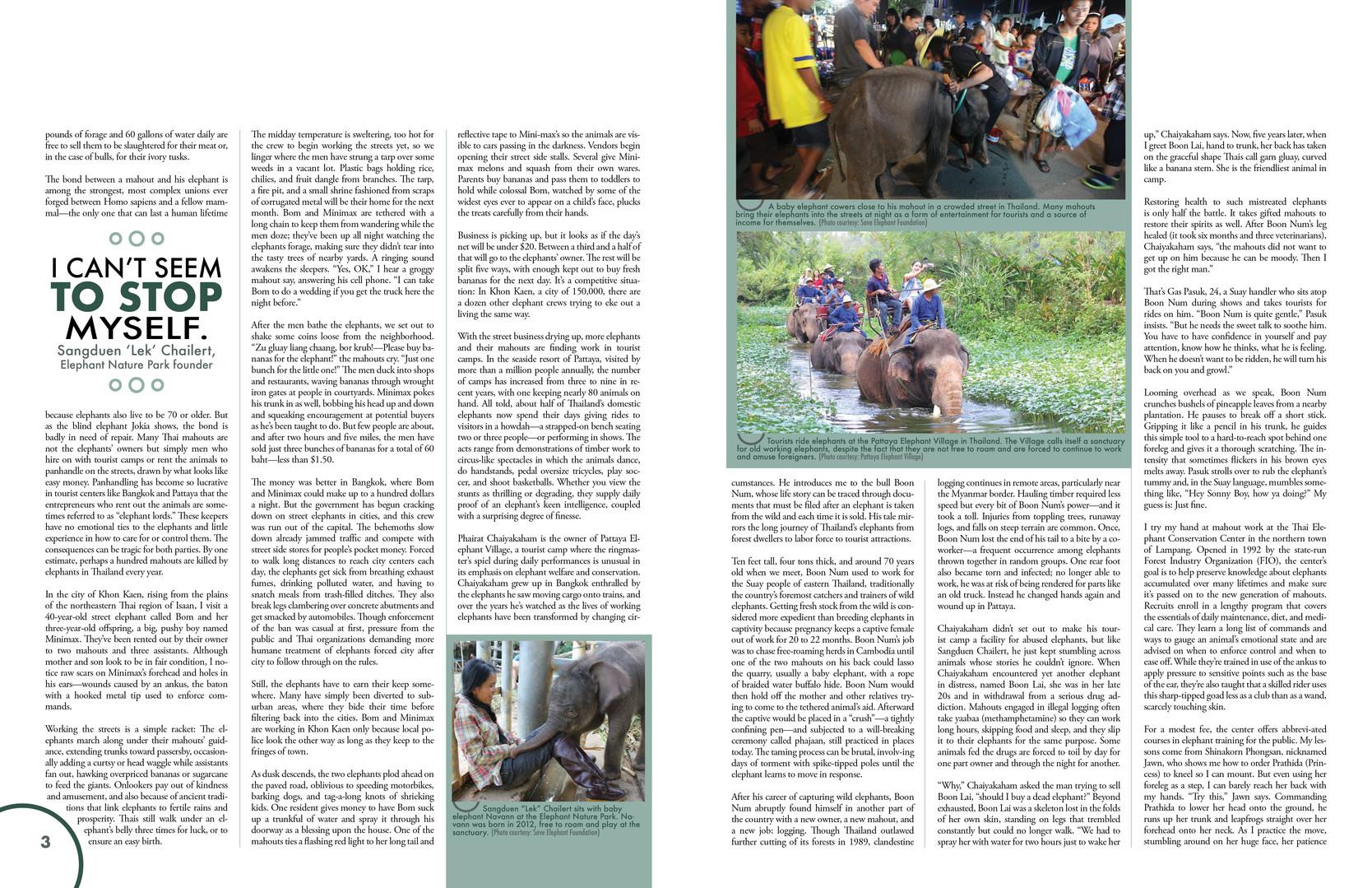 Magazine Spread for portfolio3.jpg
