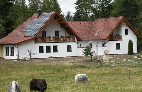 Wohnhaus und Ferienwohnung Familie Pollak Heidenreichstein Waldviertel