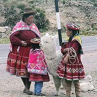 Alpaka Peru
