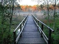 Naturpark Heidenreichsteiner Moor im Waldviertel, Ferienwohnung