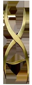 Vince Austin logo