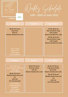 AYOY Schedule June Week 2.png